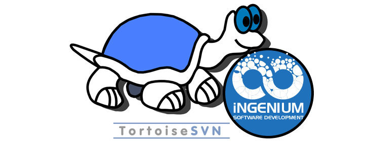 Creating SVN Repository using Tortoise SVN