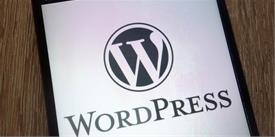 How to Make the Most Out of Your WordPress Plugins?