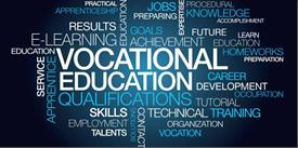 Increasing Number of Professional Businesses through Vocational Training