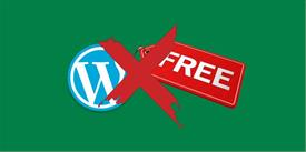 Reasons Why You Should Avoid Free WordPress Themes